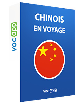 Chinois en voyage