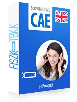 Słownictwo do CAE