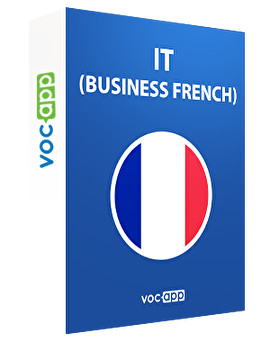 IT (Business French)