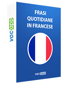 Frasi quotidiane in francese