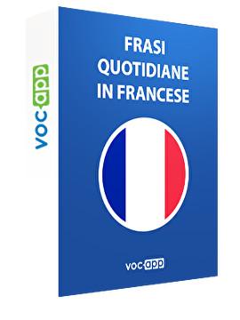 Frasi quotidiane in francese