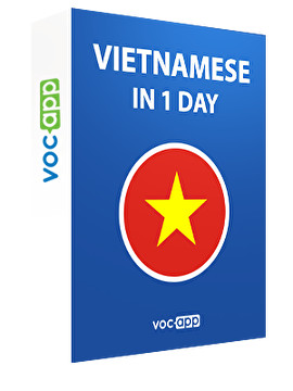 Vietnamese in 1 day