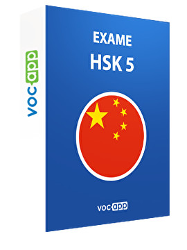Exame HSK 5