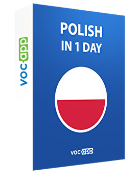 Polish in 1 day
