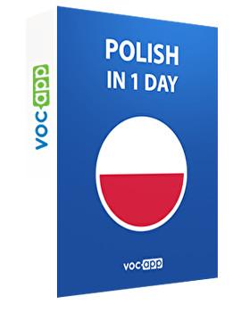 Polish in 1 day