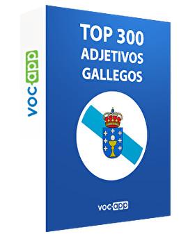Top 300 adjetivos gallegos